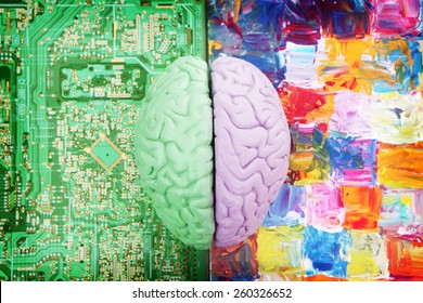 Halves of the Brain Creative vs Analytical