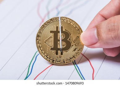 halving crypto currency bitcoin with line graph on white screen background