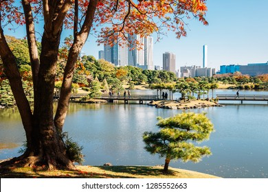 Hamarikyu Gardens pond and autumn maple in Tokyo, Japan