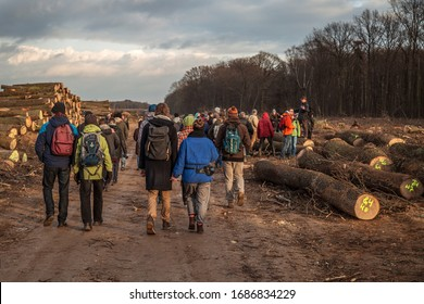 Hambach Forest, NRW/Germany, 2016, 33rd tour through the remaining forest near the RWE opencast mine after massive deforestation for brown coal. People are visiting the left-wing autonomous groups.