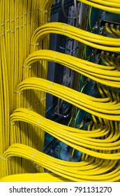 Hamburg, Germany - November 01, 2017: Network cable on a network HUB in the Data Center