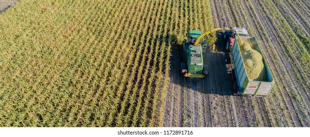 Hamburg, Germany - September 04, 2018: Corn harvest, corn forage harvester in action, harvest truck with tractor in Hamburg