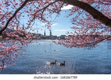 Hamburg im Frühling. Mit Blick auf die Stadt