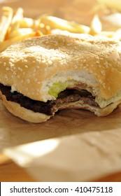 Hamburger and Fries -2