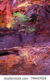 Hamersley Gorge, Karijini National Park - Western Australia