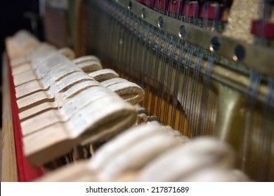 hammers of a Steinway grand piano forming a chord
