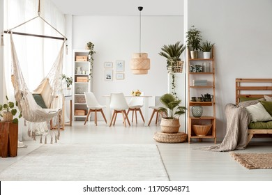 White flat interior leaves posters brazilian stock photo edit now