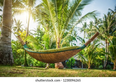 Hammock between two palm trees at tropical exotic beach background. Paradise vacation in Thailand