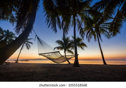 Hammock hanging from coconut palms at sunrise beach
