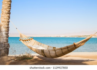 Hammock haning on tropical beach with palms