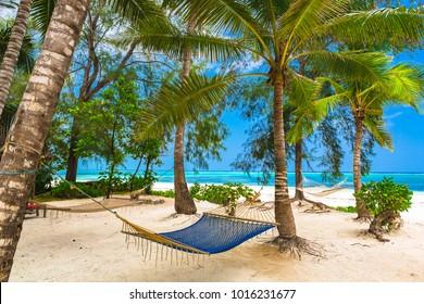 Hammock near beach in Zanzibar, Tanzania.