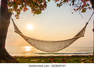 Hammock neary beach and sea on sunrise time - Vacation concept