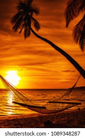 Hammock on a palm tree during beautiful sunset on tropical Fiji Islands