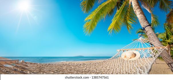 hammock on a palm tree,Leisure in summer