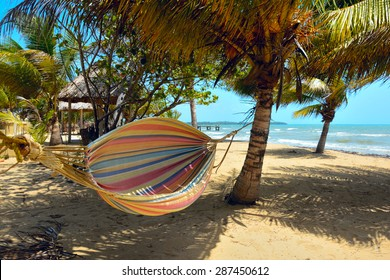 Hammock on a tropical beach catches the wind