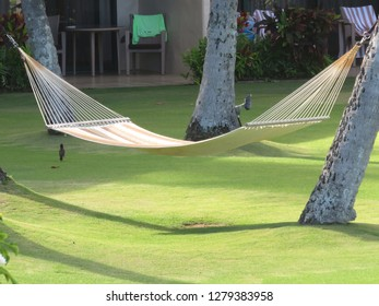 A hammock over a green lawn in a top class hotel - the 'holo holo' way of Hawaii (Kauai)