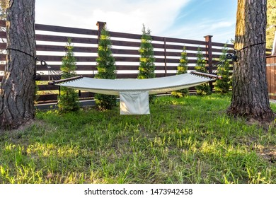 Magnificent Garden Suspended Images Stock Photos Vectors Shutterstock Gmtry Best Dining Table And Chair Ideas Images Gmtryco