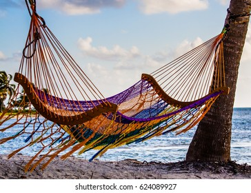 Hammock swinging from two palm trees on a beach in Belize