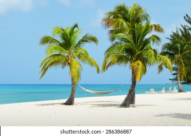 Hammock in the trees by the Caribbean Ocean