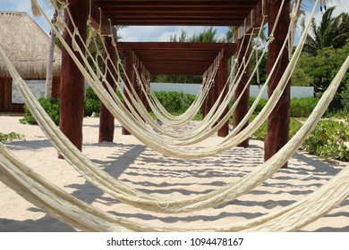 Hammocks on poles at a tropical beach area.