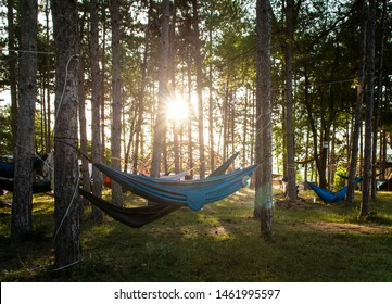 Hammocks on trees in the forest. Sunshine morning in the forest. Many hammocks. Rest outdoor concept.