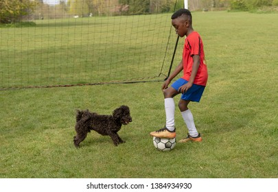 Hampshire, England, UK. April 2019. A young football player defending the goal during a traning session with his pet dog in a public park.