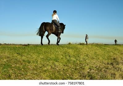 Hampshire, UK- November 17, 2017 Horse rider enjoys sunny autumn weather in Lymington and Keyhaven Marshes Local Nature Reserve in Hampshire, UK on November 10, 2017