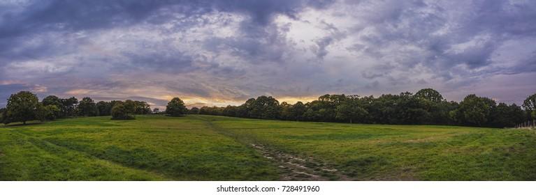 Hampstead Heath panorama at sunset