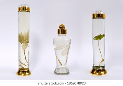 Hamyang-gun, Gyeongsangnam-do, South Korea - June 15, 2018: Herbal liquor bottles of Wild Ginseng Wine