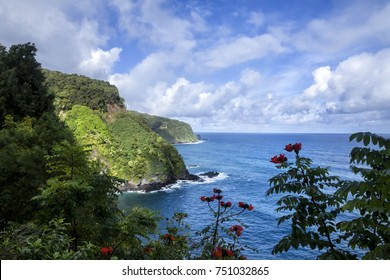 Hana Road is a long, winding which start in Kahului, Hi and ends in Hana, Hi on the island of Maui. The road feature beautiful waterfall, spectacular ocean scenes, and gorgeous flowers.
