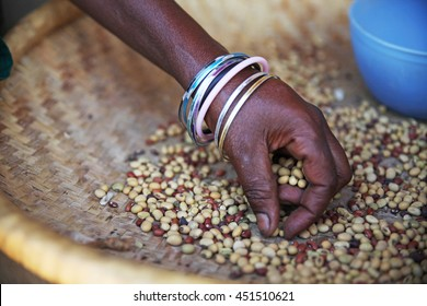 Hand of African woman sorting seeds after harvest