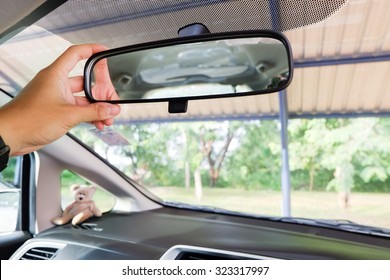 Hand Of Asian Man Adjusting The Rear view Mirror / Asian man use rear view mirror
