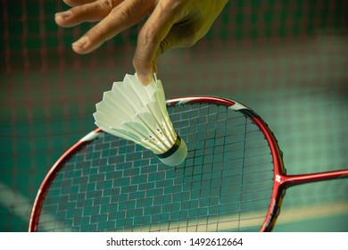 Hand of BADMINTON player holding racket and serving shuttlecock with blur Badminton court background.