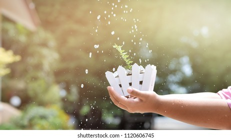 Hand of boy holding money coin with tree and Watering, Slow Motion.  bokeh background. Business money growing