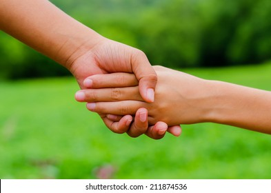 Hand of a brother and sister. Outdoor in a meadow