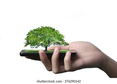 Hand of businessman hold smartphone with big tree on screen isolated on white background. concept of technology and network communication by abstract art.