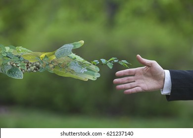 Hand of a businessman reach out towards hand of the nature