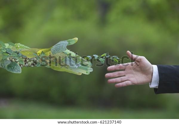 La main d'un homme d'affaires tend vers la nature
