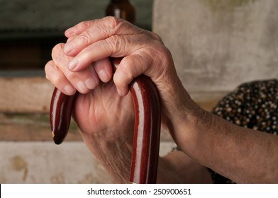 hand of a cane