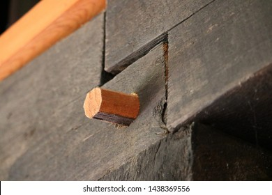 a hand carved wooden peg anchors a hand hewn mortice and tenon timber frame joint