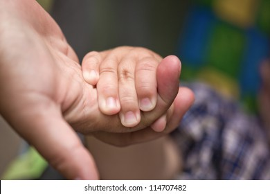 The hand of the child holds a hand of the adult