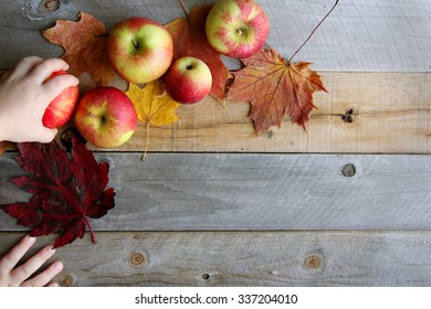 The hand of a child is stealing an apple from a still life photo shoot set of prop apples, pumpkins and leaves on a rustic wood background.