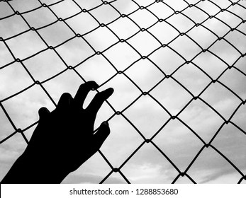 Hand with climbing a grating go to the sky for freedom, black and white colour.