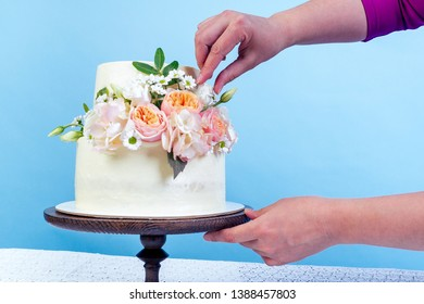 hand close-up decorates working space baker confectioner pastry chef appetizing creamy white two-tiered wedding cake decorated with fresh flowers on a table studio on a blue background