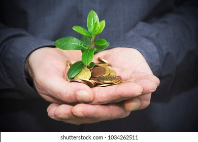 hand with coins and young plant, business concept