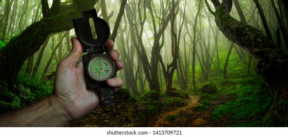 Hand with compass in the jungle