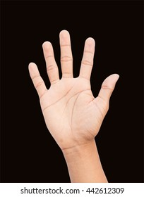 hand counting number five  Isolated on black background and clipping path