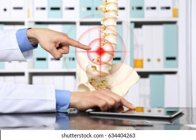 hand doctor pointing the skeleton of spine, hernia concept causes backache