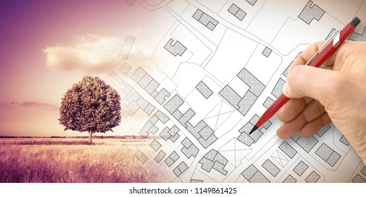 Hand drawing an imaginary cadastral map of territory with a tree on background - concept image