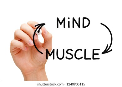 Hand drawing Mind-Muscle connection concept with black marker on transparent wipe board isolated on white.
